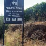 De wijngaarden van Montepatria