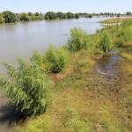 We volgden de Rio Negro honderden kilomaters lang